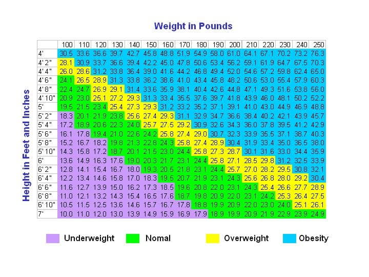 BMI Chart for Women