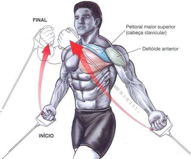 muscles worked by the Low Pulley Cable Crossover https://www.getstrong.fit/Low-Pulley-Cable-Crossovers-How-to-Guide/Exercises